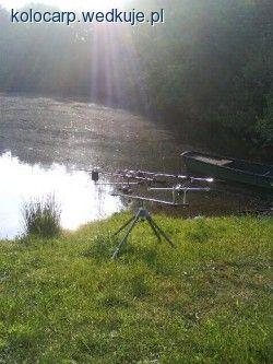 Wiosenny karp - �erowanie karpia wiosn�  - na rybach, zdj�cia, opinie